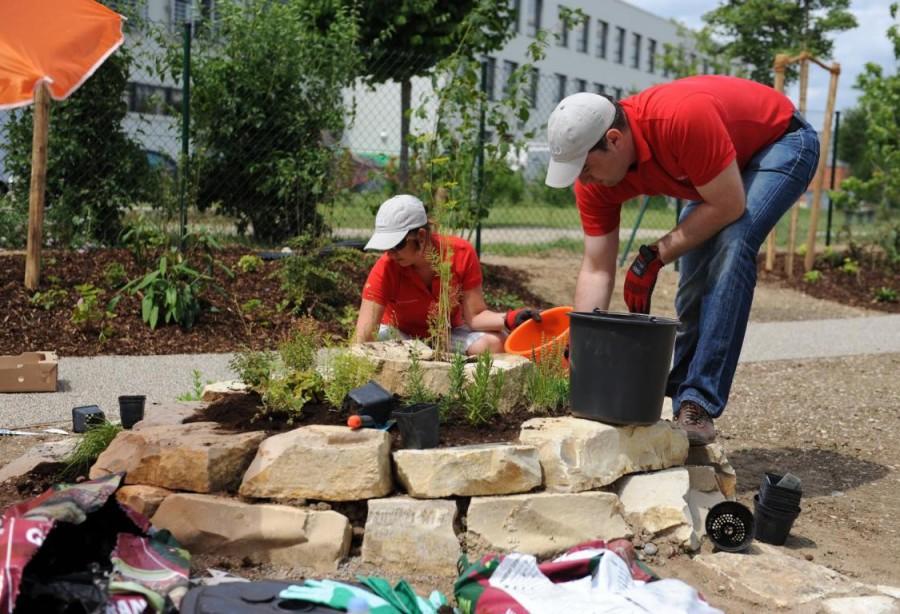 AUDI Freiwilligentag